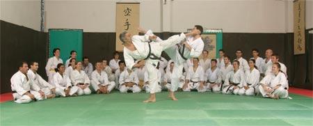 club de karate toulouse