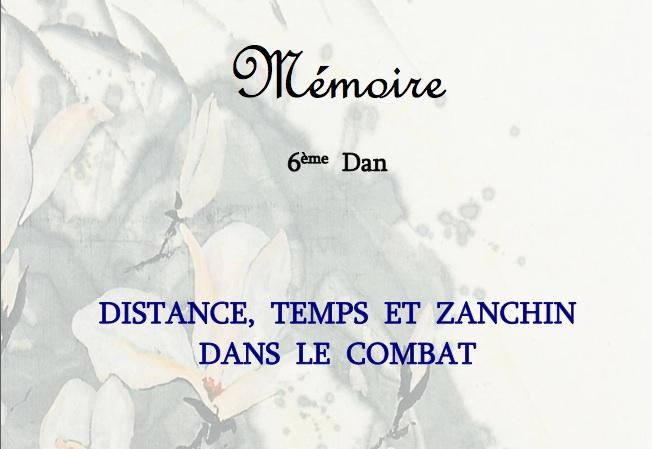 Mémoire 6e dan Lilian Froidure