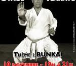 stage-karate-lavorato-toulouse-2015-novembre