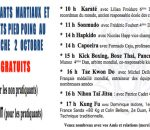 Dimanche 2 octobre GRANDE JOURNEE ARTS MARTIAUX   STAGES  GRATUITS et Sport de Combats Pied-Poings