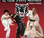 brochure saison 2017-2018 (vous trouverez sur cette brochure de très nombreux renseignements sur les disciplines pratiquées au Shaolin.