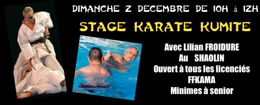 Stage combat Dimanche 2 décembre de 10H à 12H