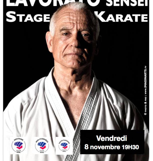 Vendredi 8 novembre Stage au Shaolin avec Maitre Lavorato 9ème Dan