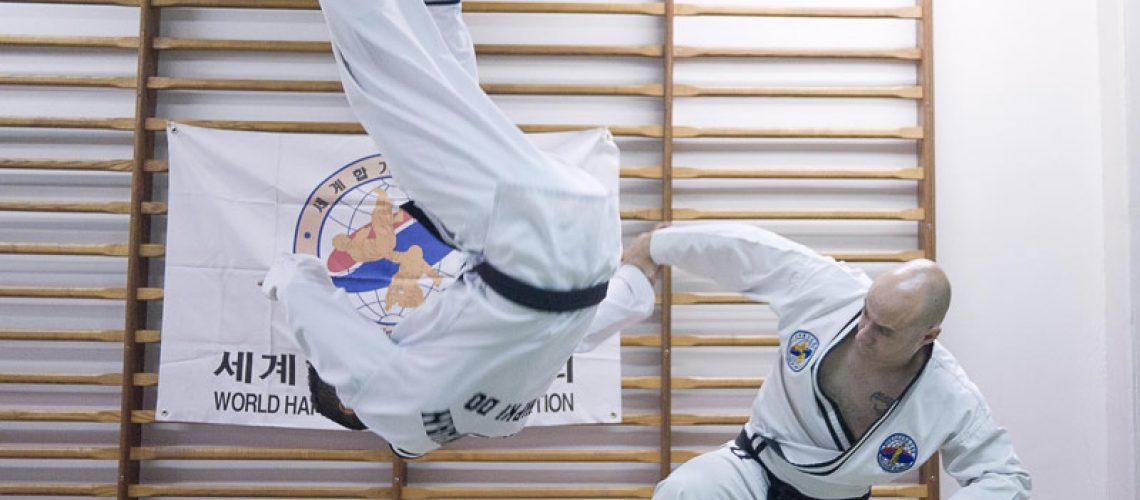 Hapkido au Shaolin Toulouse